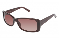 cce50d2b5f4bc Ted Baker Sunglasses