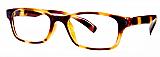 Otego Eyeglasses Dillon