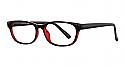 Focus Eyeglasses 53