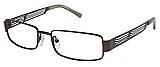 Ted Baker Eyeglasses B204 Reunon